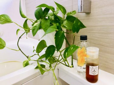 Lys blanc Volteメンバー記事「はちみつ風呂で夏の疲れを取る!!」