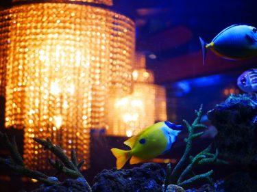 【まるで海の中!】デートにぴったり♪アクアリウムフレンチレストラン「銀座 水響亭」