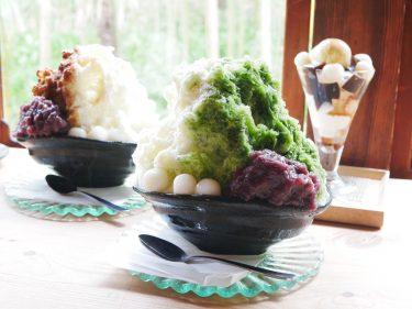 【奈良で人気の古民家カフェ】かき氷が美味!行列必至の奈良カフェ「みやけ」