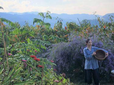 日本の自然のチカラをもっと近くに。MIRATOAMIプロデューサー/中村明茶花さん